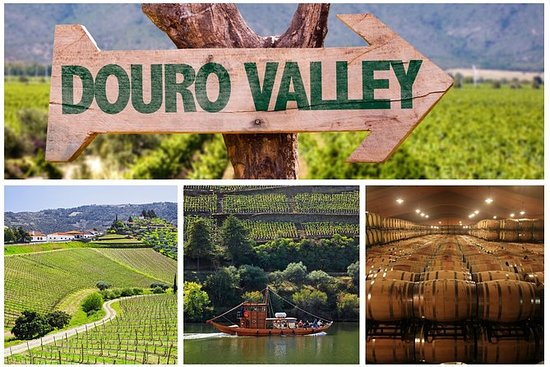 Douro Valley Tour: Vinsmaking, River...