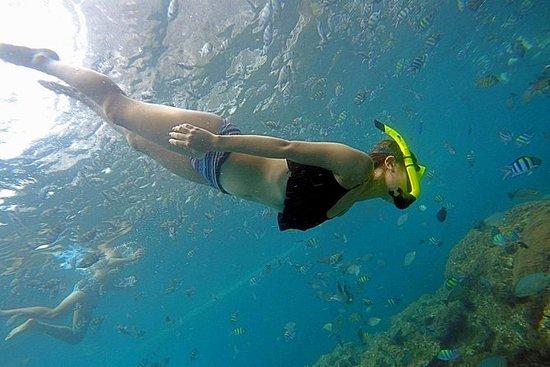 Las islas Phi Phi y Khai en lancha...