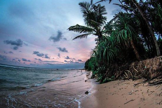 10晚斯里兰卡海滩之旅