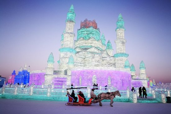 Harbin Group Day Tour: Ice and Snow...