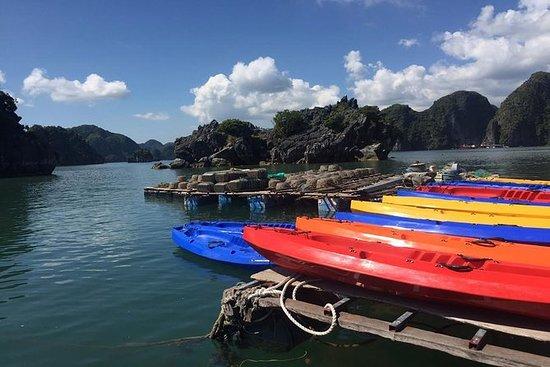 1 dag Halong Bay via HIGHWAY...