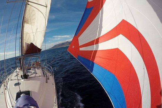 Flounder Yacht Tours de voile