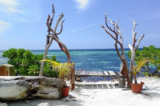 Tagesausflug zur lokalen Insel...