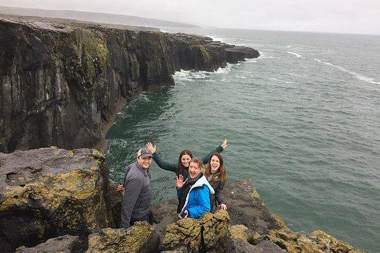 Cliffs of Moher og Galway bay privat...