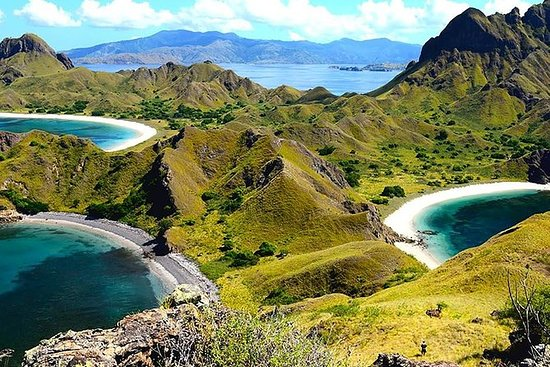 1- day Komodo island Tour hopping...