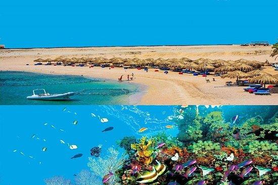 Excursión de snorkel al día de Sharm...