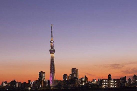 Tour 1 day tokyo