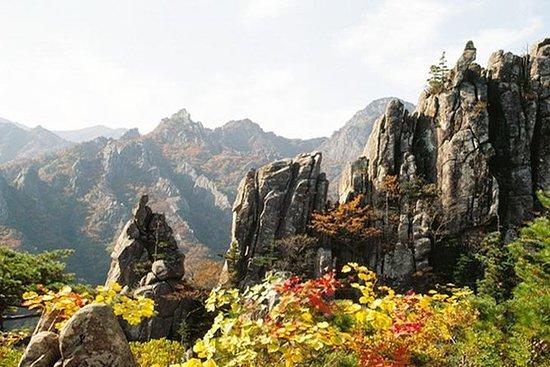 雪岳山国家公园的私人徒步旅行,包括韩国正宗的鸡汤