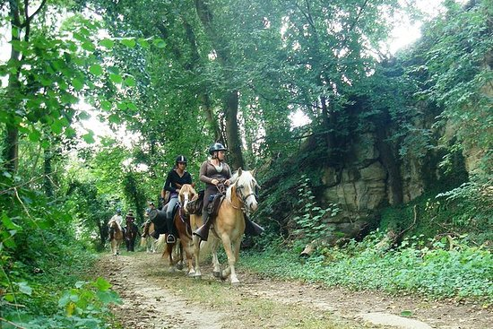 Horse riding in the French countryside
