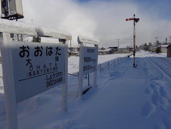 Mutsu, Japonia: 大畑駅