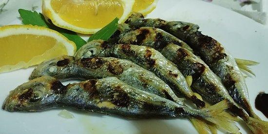 Best fish restaurant on the coast