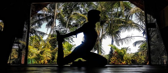 Hinterland Village: yoga studio