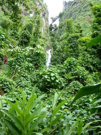 Just Go Dominica – fotografija