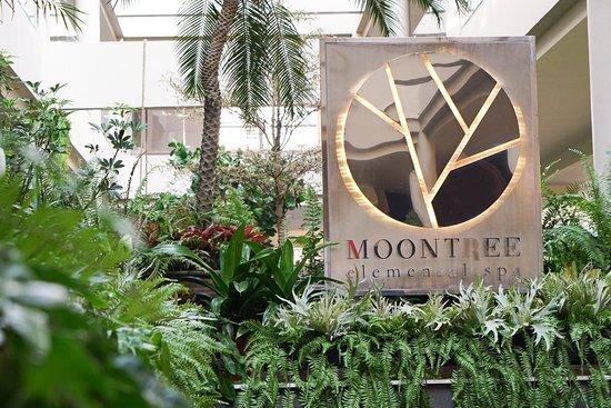 Moontree Elemental Spa