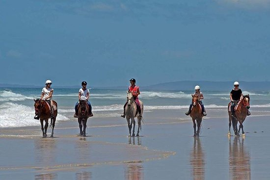 Ballina, Australien: Group Beach Ride