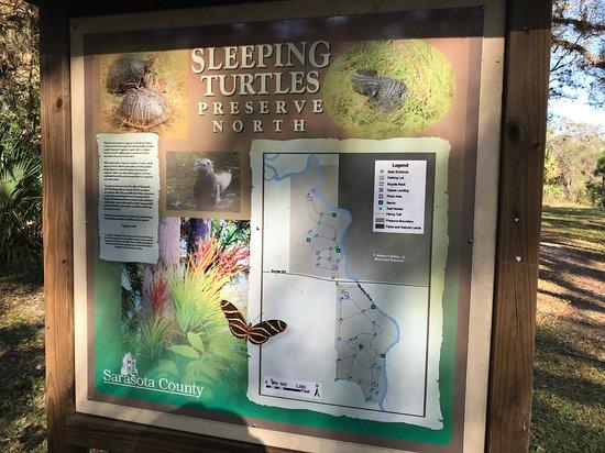 Sleeping Turtles Preserve North