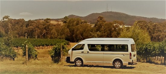 Orange Wine Tours at Nashdale Lane Vineyard with views of Mt Conobolas.