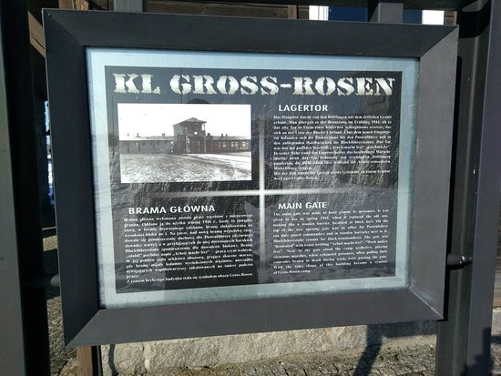 Western Poland, Poland: Gross-Rosen concentration camp (German: Konzentrationslager Groß-Rosen) was a German network of Nazi concentration campsbuilt and operated d