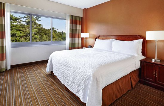 bedbugs bedbugs and more bedbugs review of embassy suites by rh tripadvisor ca