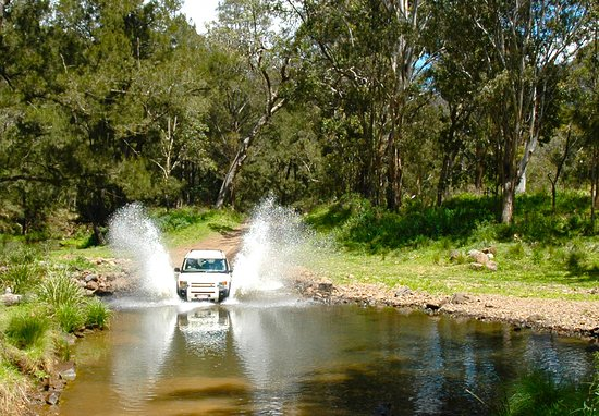 Eco Safaris Queensland