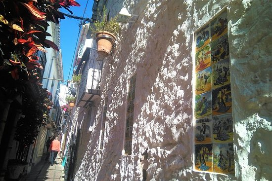 Paseo privado por Marbella