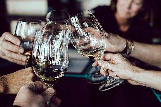 Bodegas Vidular wine tasting in...