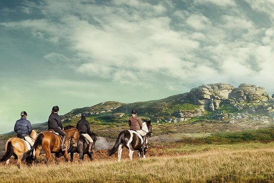 Découvrez Dartmoor à cheval