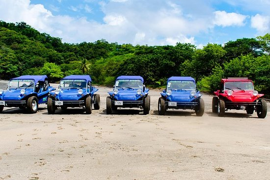 Adventure Buggy Tours