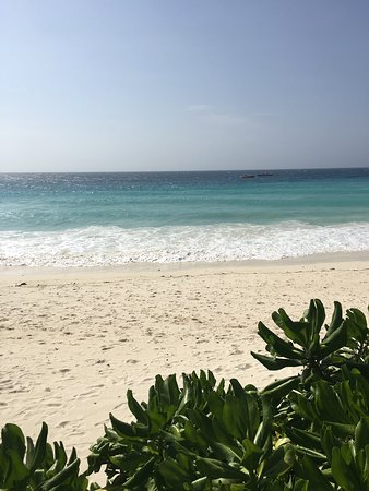 Indimenticabile Zanzibar