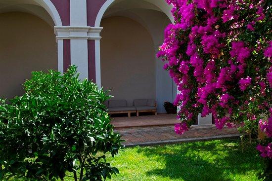 Villa Paola照片