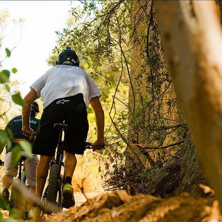 Paarl, South Africa: getlstd_property_photo