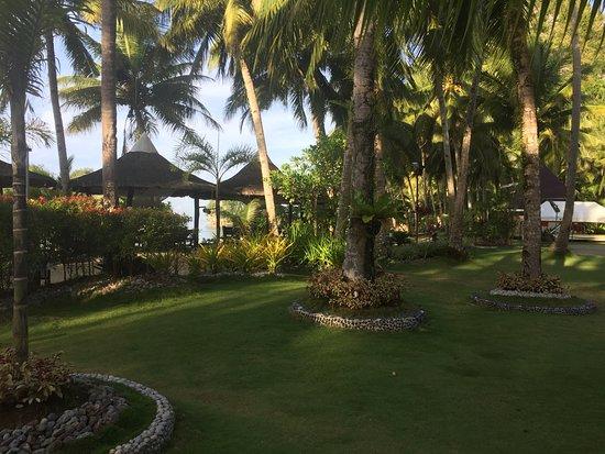Samar Island照片