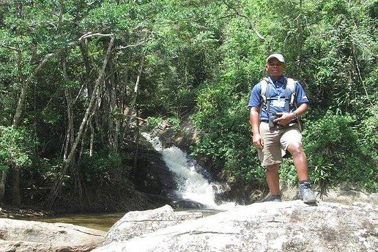 アマニ自然保護区への日帰り旅行 - タンガ市から