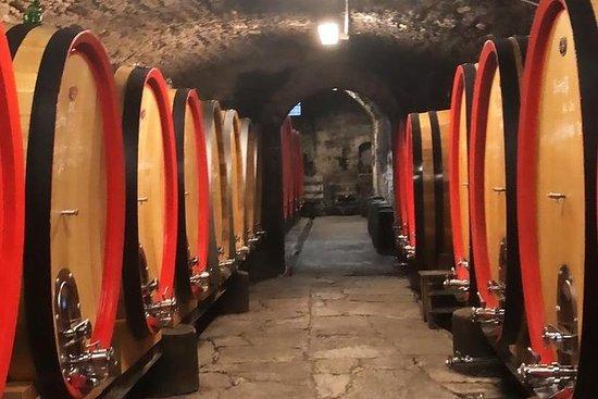 Vinsmaking i Toscana ved Florence Wine...