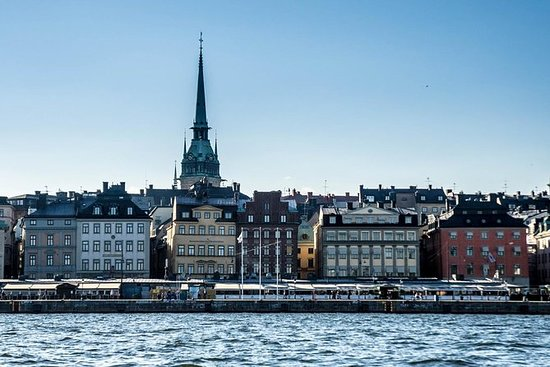 Private Car Tour of Stockholm with a...