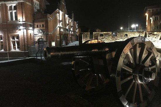 德里丹德斯夜间城市中心徒步之旅