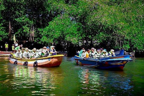 斯里兰卡4天导览游。加勒,米里萨和亚拉
