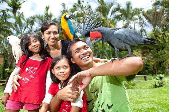 Bali Bird Park Admission Ticket with...