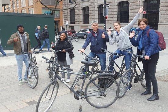 Electric Bike Tour av Central Park og...