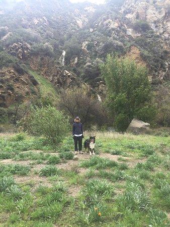 Santa Ynez Canyon Park