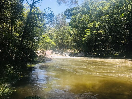 Daintree Region Photo