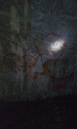 Republic of Bashkortostan, Russia: Удивительное рядом. Древние наскальные рисунки в пещере Шульган-таш. Самое интересное, что из-за особого микроклимата, там не бывает холодно, по этому экскурсии проводятся даже зимой.