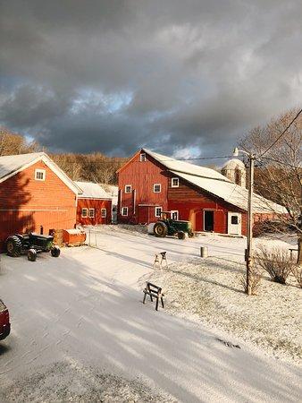 Buck Hill Farms