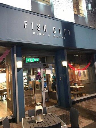 Fish City Image