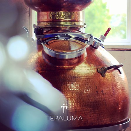 La Junta, Chile: Tepaluma gin is distilled in this beauty, our 500 L copper pot still named Anne.