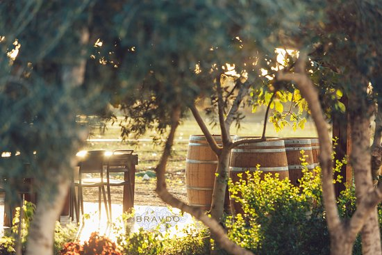 Hulda, Israel: The pastoral visitor center of BRAVDO is located at the heart of its vineyards.