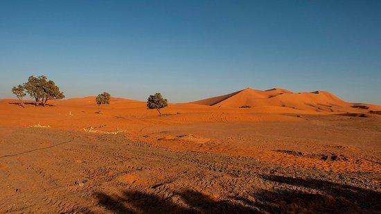 Sahara Experience Tours: Alla scoperta del Regno del Marocco