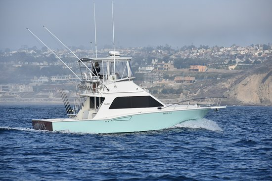 Harbor Boat Rentals & Charters
