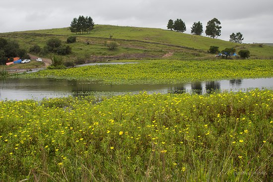 Bom Jesus: Área de camping no entorno da barragem.