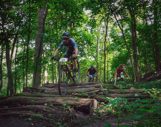 Hanna City, IL: Wildlife Prairie Park now offers over 20 miles of well-maintained mountain biking, hiking, trail running, XC skiing and snowshoeing trails.